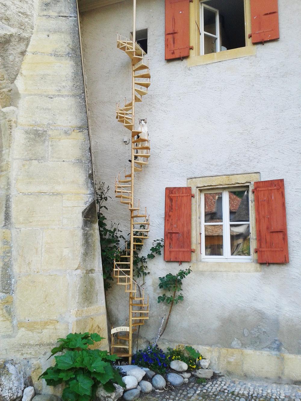 echelle_A_chat_suisse_sur_mesure_WEB