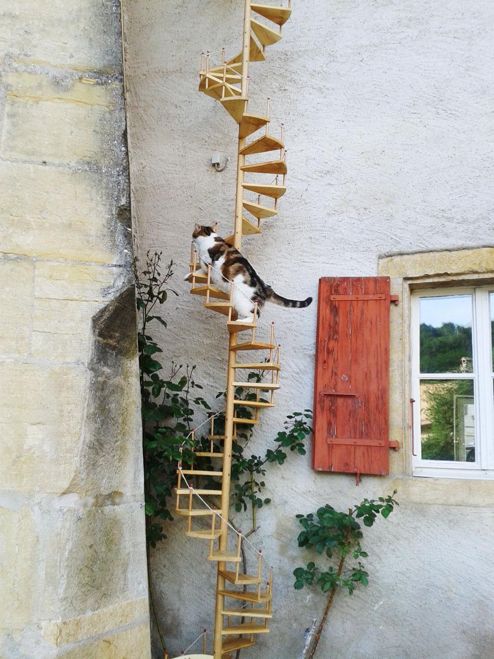 echelle_A_chat_suisse_sur_mesure_photo_1